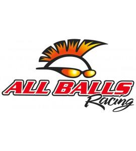 All Balls, Bromscylinder Rep. Kit Fram, FRAM, Kawasaki 19-20 KX450